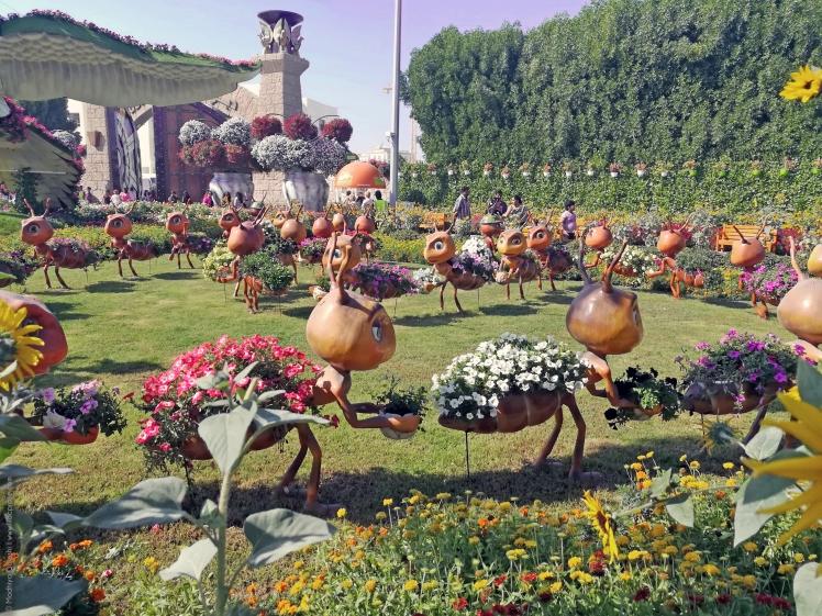 Dubai-Miracle-Garden-19.jpg