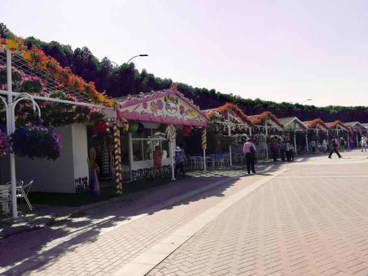 Dubai-Miracle-Garden-6.jpg