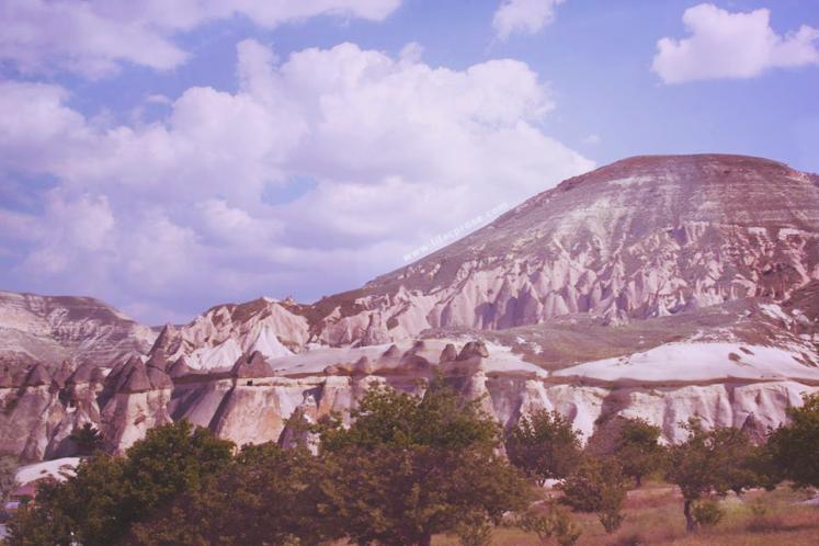 International Mountain Day_Lilac Prose 4.png